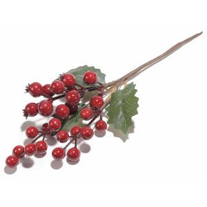 Crenguta Berry Red